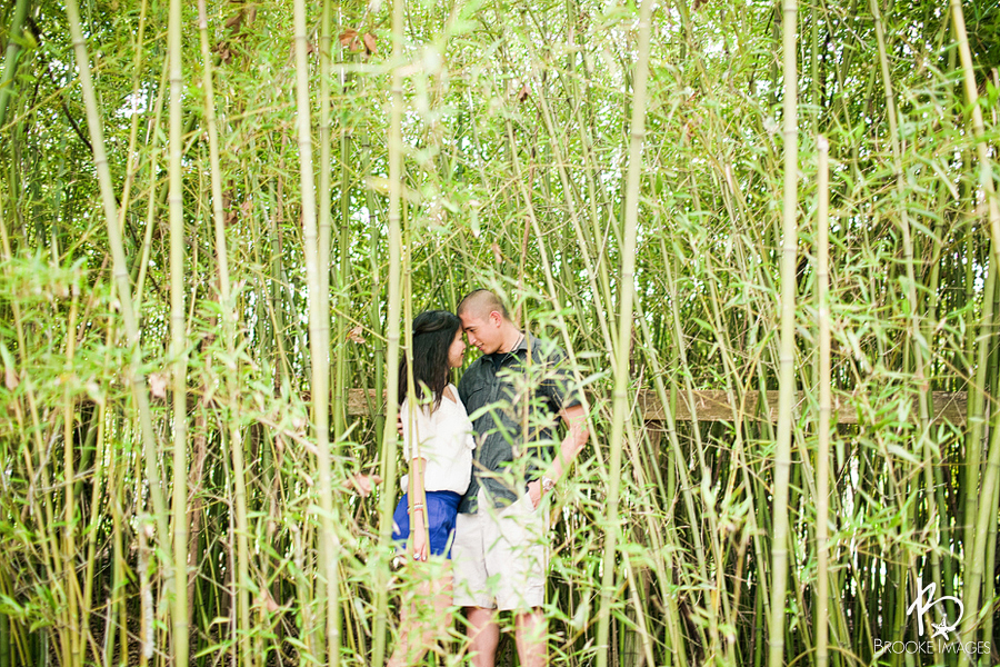 St. Augustine Wedding Photographers, Brooke Images, Jacksonville Wedding Photographers, Engagement Session