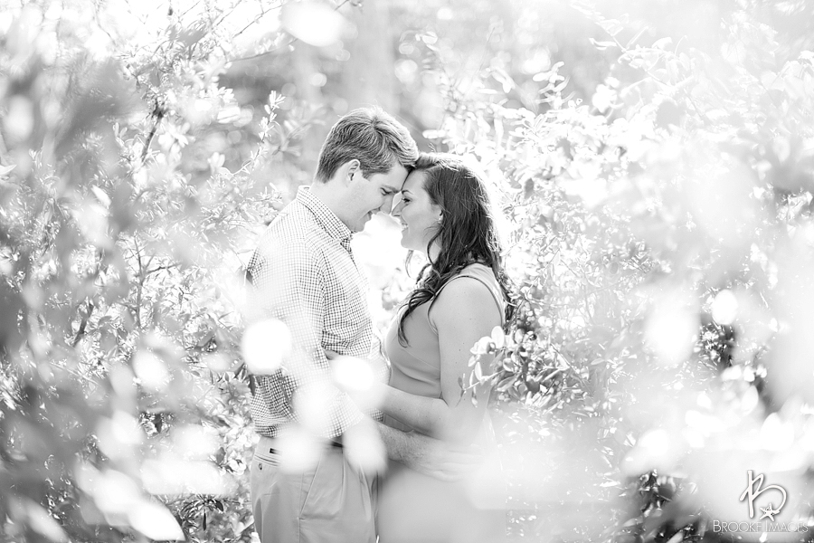 Jacksonville Wedding Photographers, Brooke Images, Fernandina Beach, Robin and Kyle&#039;s Engagement Session