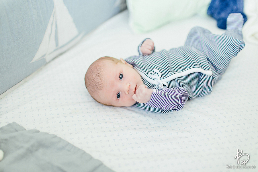 Jacksonville Lifestyle Photographers, Brooke Images, Finn